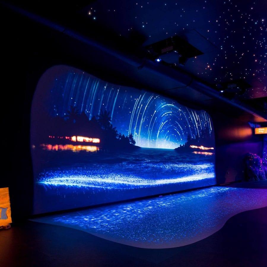 audiovisual installations Sydney Sea Life